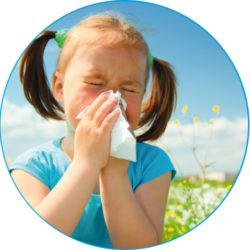 allergie2